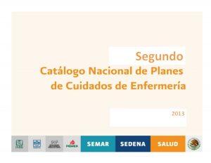 Book Cover: Segundo Catalago Nacional de Planes de Cuidados de Enfermeria